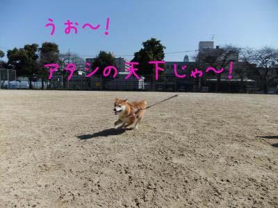 2011_02_26_05のコピー
