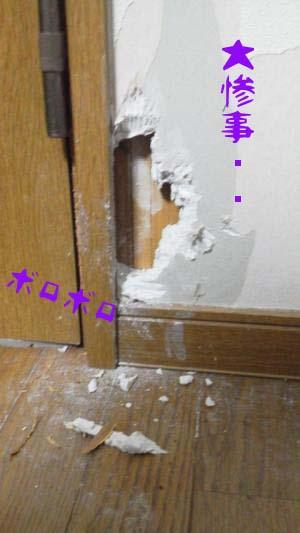 2011_02_26_01のコピー