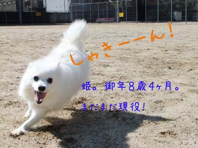 2011_02_26_09のコピー