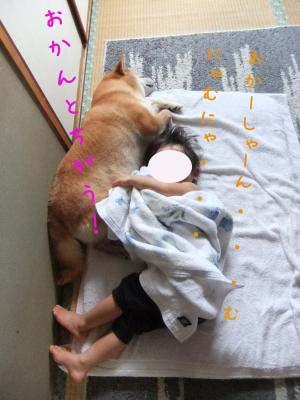 2011_09_28_06のコピー