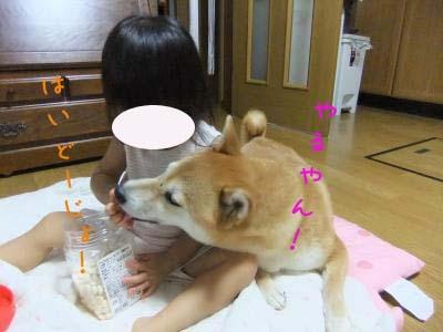 2011_09_28_02のコピー