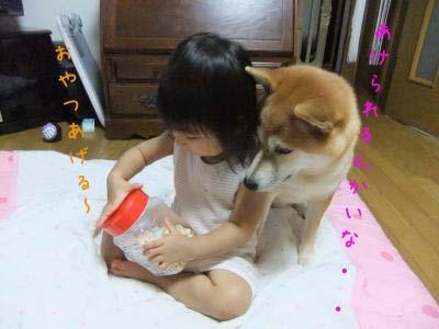 2011_09_28_01のコピー