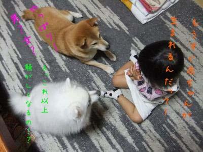 2011_10_15_01のコピー