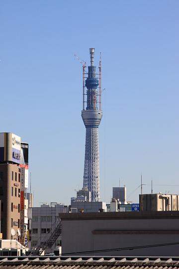 20110111-16.jpg
