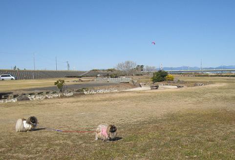 2010-02-07-4.jpg