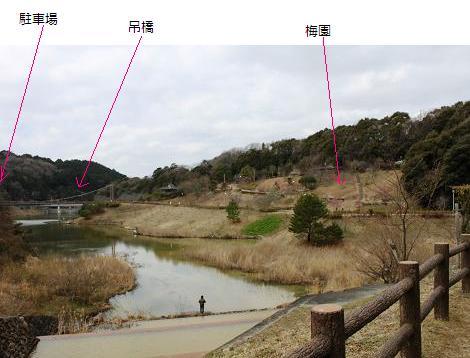2010-02-21-11.jpg