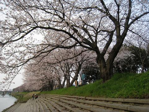 2010-03-28-1.jpg