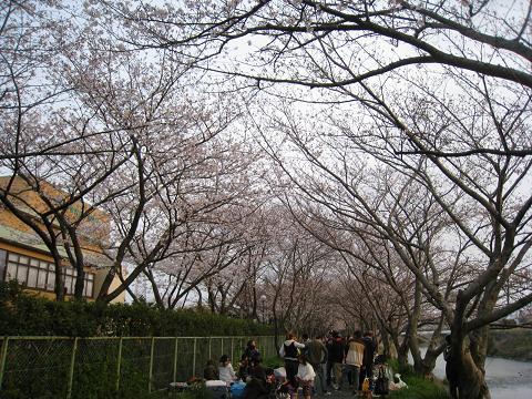 2010-03-28-3.jpg