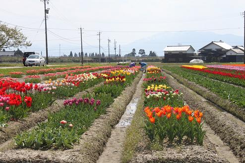 2010-04-30-12.jpg