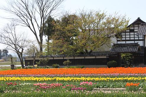 2010-04-30-16.jpg