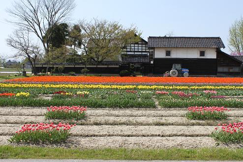 2010-04-30-8.jpg