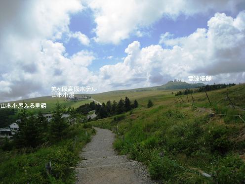 2010-08-03-11a.jpg