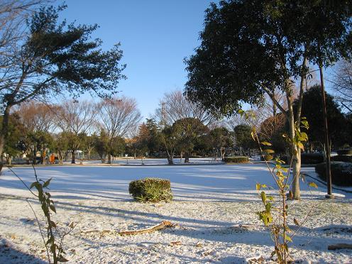 2011-01-17-2.jpg