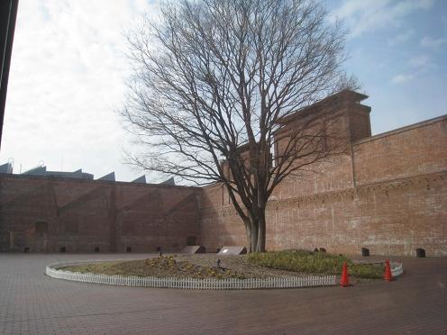 2011-02-24-8.jpg