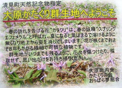 2011-05-02-2.jpg