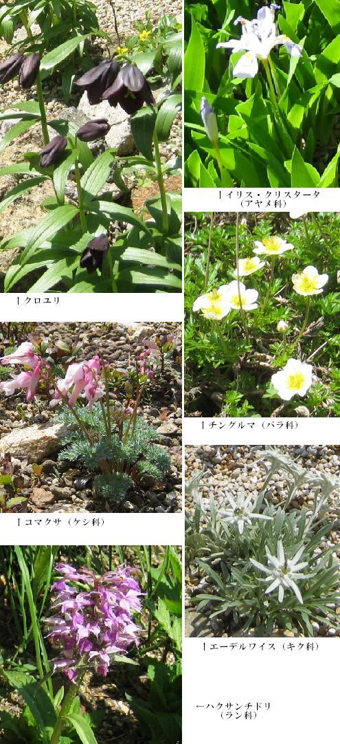 2011-05-14-10.jpg