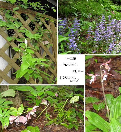 2011-06-19-22.jpg