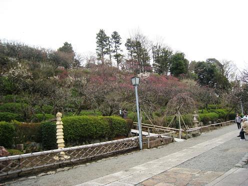 2012-03-01-12.jpg