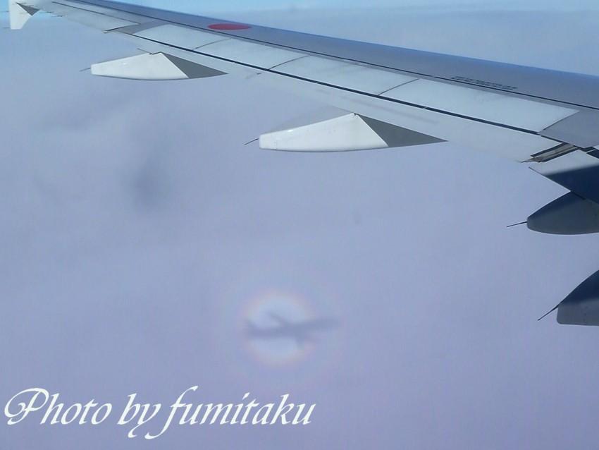 宮崎空港 (5)