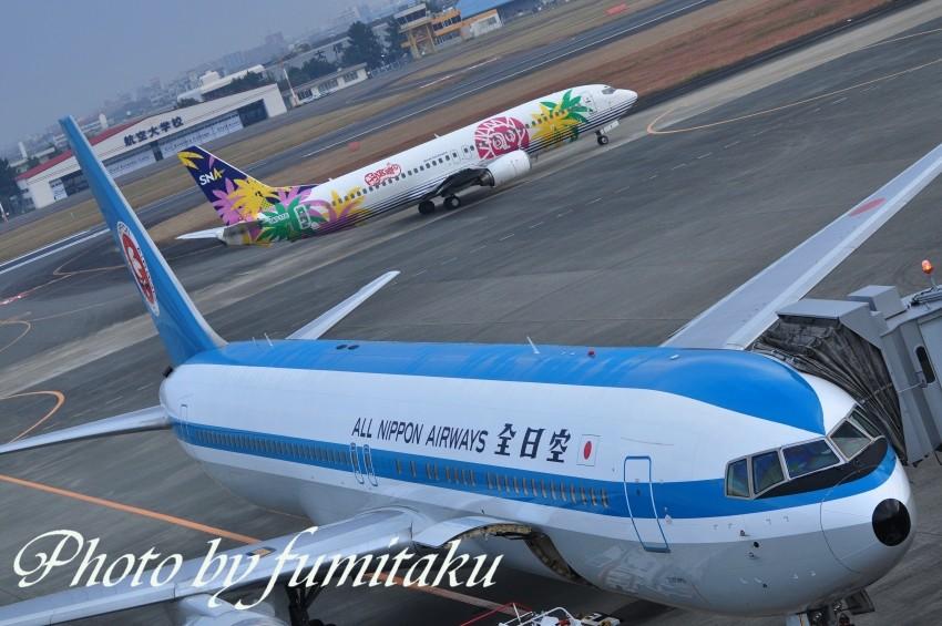 宮崎空港 (3)