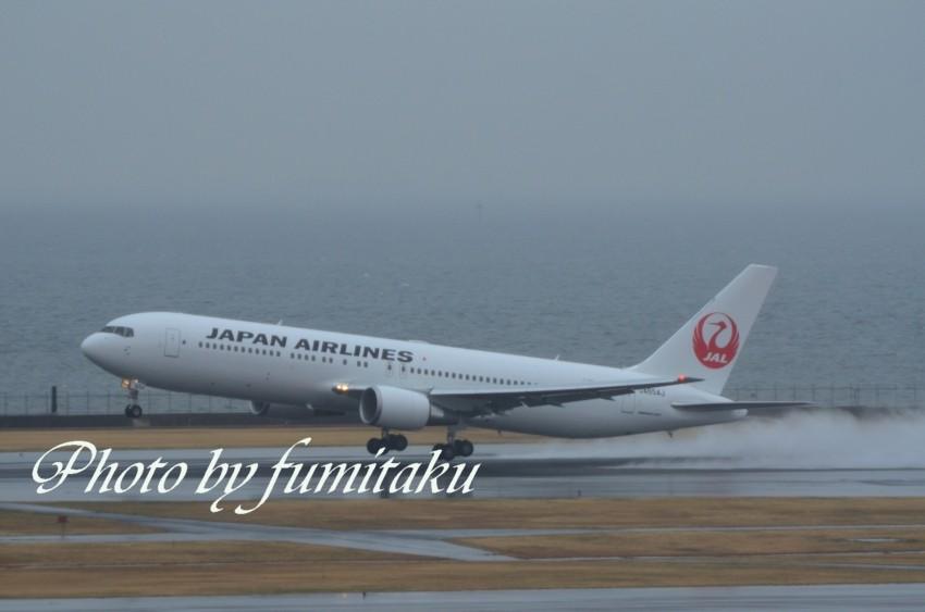 新鶴丸 (3)