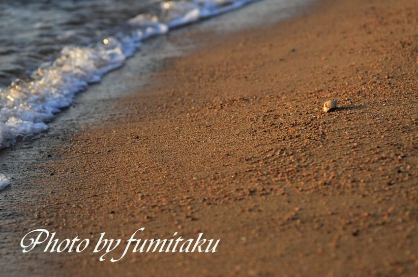 57りんくうビーチ