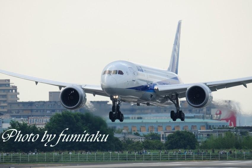 75伊丹787 (2)