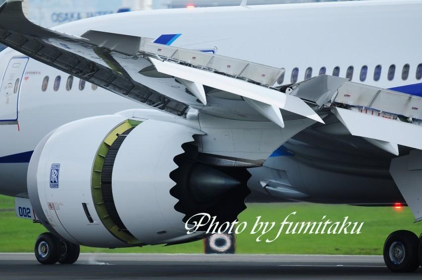 75伊丹787 (7)