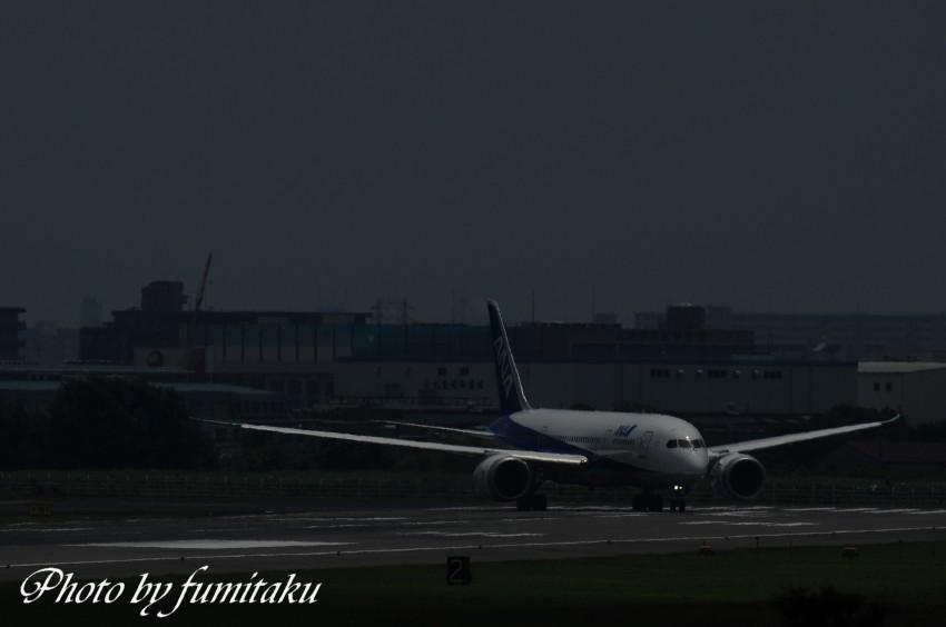 75伊丹787 (15)