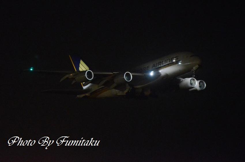23845成田 (40)