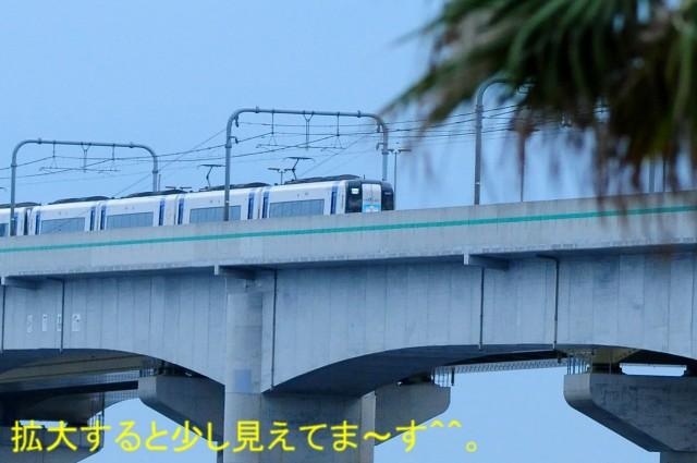 DSC_0636_01.jpg
