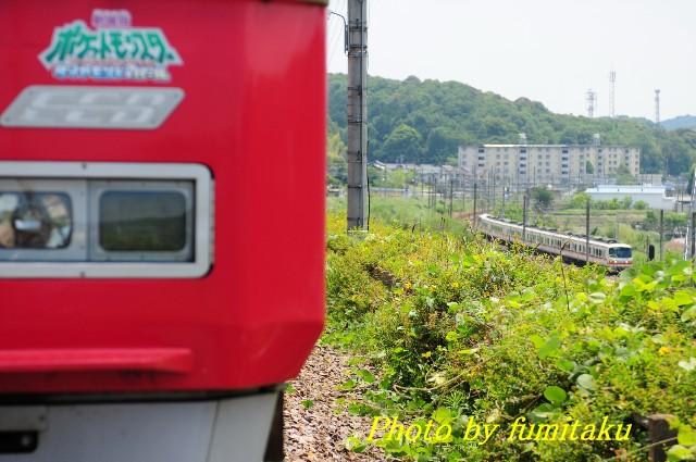 DSC_3836.jpg