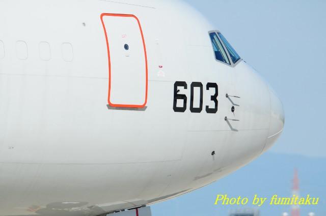 DSC_4314.jpg