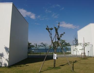 横須賀美術館のテラス