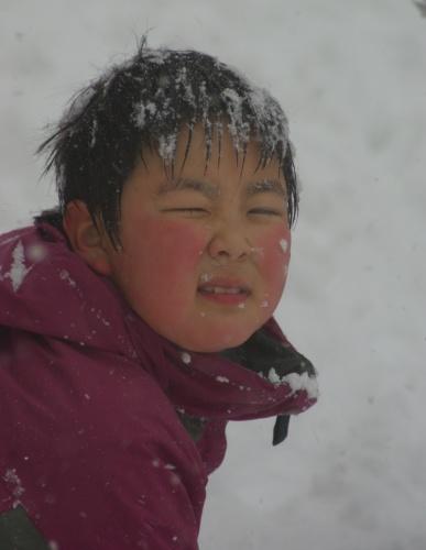 雪まみれ ユウマくん