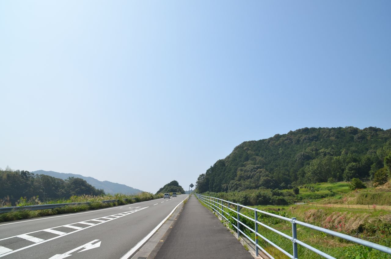 DSC_8554-2.jpg