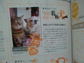 2月24日看板犬猫