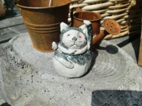 3月30日しぇー猫