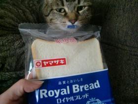 7月1日パンもらえた