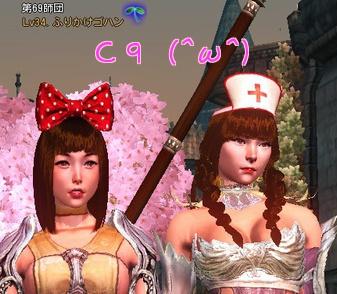 C9.jpg