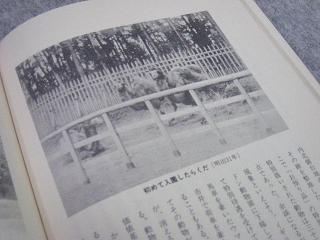 bunka015.jpg