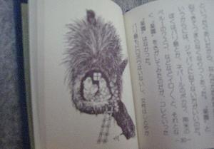 mizuki009.jpg