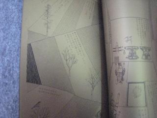 tanikawa003.jpg