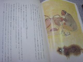 tuji003.jpg