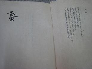 yoshida002.jpg