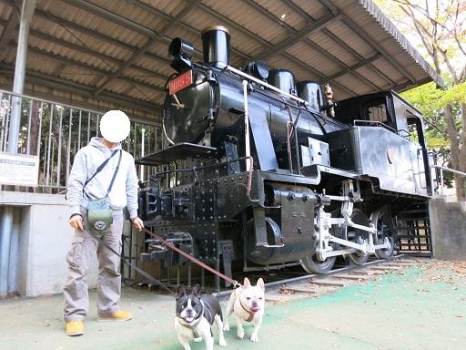 11-23機関車と