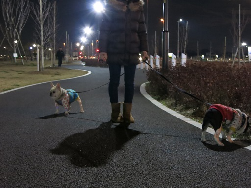 12-25更科公園お散歩②