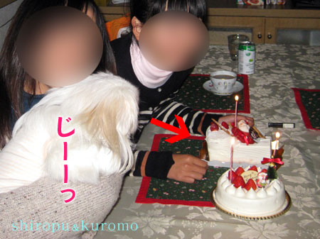 IMG_10766.jpg