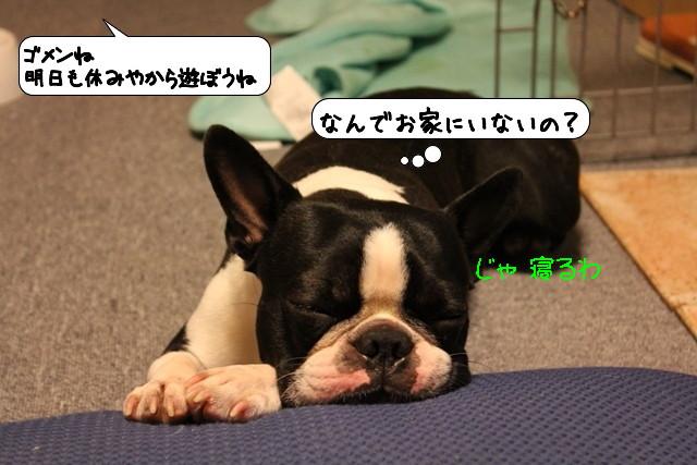 20110718_005244.jpg