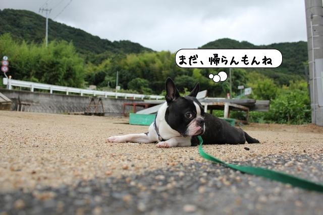 20110722_055016.jpg
